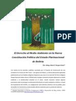 64107381 El Derecho Al Medio Ambiente en La Nueva Constitucion Boliviana