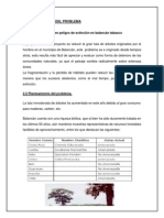protocolo taller.docx
