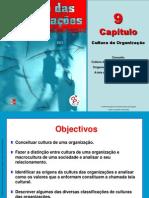 Gestao Das Organizacoes CAP 9