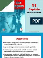Gestao Das Organizacoes CAP 11