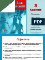 Gestao Das Organizacoes CAP 3