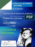 Lactancia Materna 2014