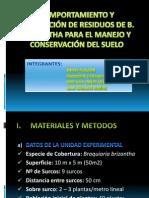 COMPORTAMIENTO Y PRODUCCIÓN DE RESIDUOS DE B. BRIZANTHA.pptx