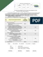 Anexa 2.2 - Program Faze Determinante Electrice