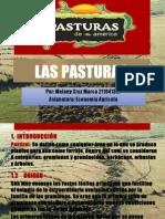 LAS PASTURAS.pptx