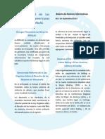 Boletin_informativo_nº11