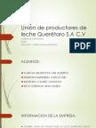Unión de Productores de Leche Querétaro S