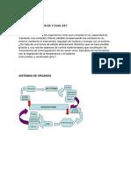 Copia de Seguridad de Homeostasis Anatomia-4
