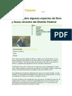 Flora y Fauna Del DF
