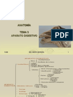 Anatomia Del Aparato Digestivo Animal