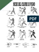 Ju Jitsu - Tecniche Del Colpire