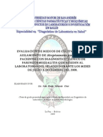 identificacion streptococos