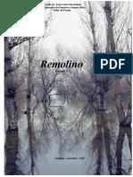 Remolino 4