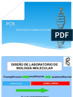 PCR Analia