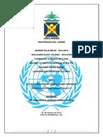 Trabajo Final ONU