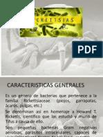 Rickettsia (1) (1)