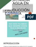 Importancia Del Agua en La Producción Porcina