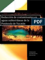 Reduccion de Contaminantes en Aguas Subterraneas de La Peninsula de Yucatan