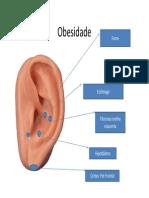 protocolos de  auriculoterapia (1).pdf