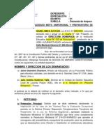 Demanda de Amparo Directores Puquio 2014 (2)