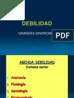 46744075-1-DEBILDAD