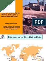 Gestión Ambiental nacional, regional y local