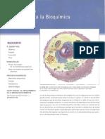 002 Introduccion a La Bioquimica 28p