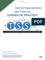 GTRT SpanishLA PracticeTest 030414