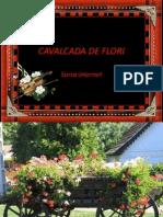 Flori Pentru Placere