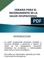 Programa Para El Mejoramiento de La Salud Ocupacional