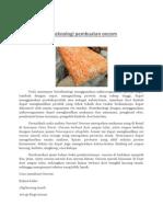 Bioteknologi pembuatan oncom