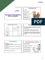Reabilitaçao Da Perna, Pé e Tornozelo (1) (1)