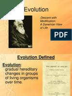 evolution- spoor
