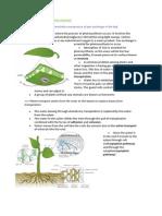 Plant Biology AHL