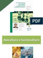 Aula 2 - Avicultura e Suinocultura