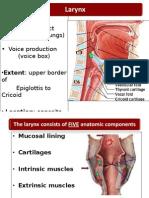 LarynxBDS