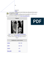Cáncer-Enciclopedia Colectiva en La Web-Vista Del 28-07-2013