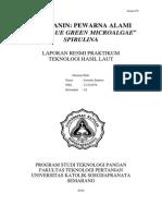 FIKOSIANIN_LORENTIA SANTOSO_12.70.0078_KLOTER A_UNIKA SOEGIJAPRANATA