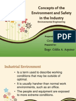 Concepts of Environment and Safety in the Industry