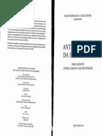 Barth Fredrik Tematicas Permanentes e Emergentes Na Analise Da Etinicidade