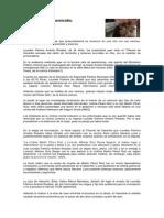 Elementos Del Delito Aplicados a Un Caso Concreto Corrupcion Descendiente o Adoptado.