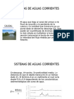 Ecologia de Rios