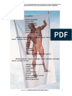 58381350 Generalitati Anatomice Libre