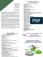 metodologia triptico-1.ppt
