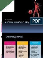 7 Sistema Músculo esquelético