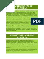 Plantas y Plantas Nativas