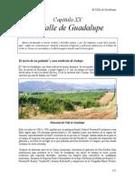 [24] El Valle de Guadalupe. XX