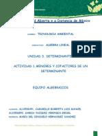 ALI-U3-MCE-AL.docx