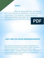 Ciclos Biogeoquímicos.docx 12