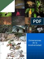 Biodiversidad DESARROLLO.ppt